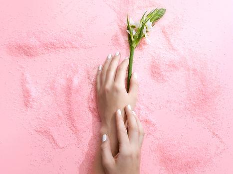 Blume auf Rosa