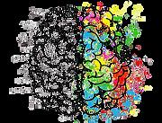 brain-2062057_960_720-1-removebg-preview