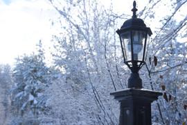 Lamp Post in Snow