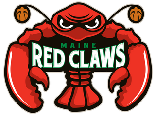 Red Claws Internship