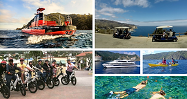 Catalina Coffee & Cookie Co partner Catalina Tours