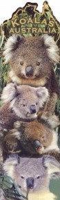 Koalas AUSTRALIA (Bookmark)