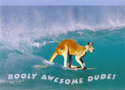 Rooly Awesome Dude! (Surfing Kangaroo)