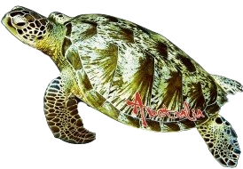 Sea Turtle Australia Shape Postcard PC194