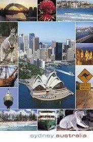 Sydney Australia (13 scene)