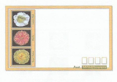 AE2 Wildflowers envelope front