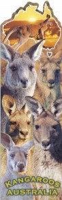 Kangaroos AUSTRALIA (Bookmark)