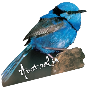 Blue Wren Australia Shape Postcard PC231