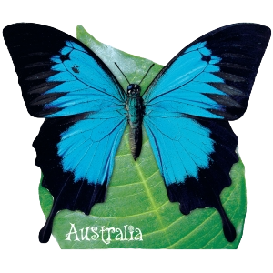 Ulysses Butterfly Shape Postcard PC228