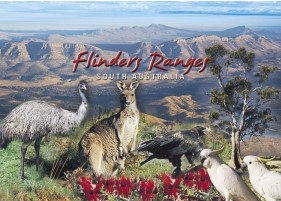 Flinders Ranges South Australia PC239