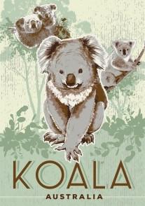 Koala Australia (Vintage) PC179