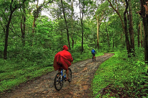 Coorg_Cycling_Monsoon.jpg