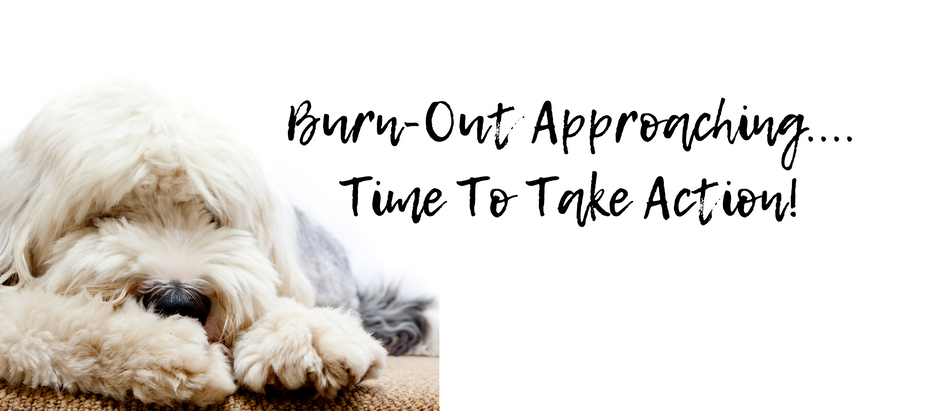 Step Away From The Self-Destruct Button - How To Avoid BurnOut