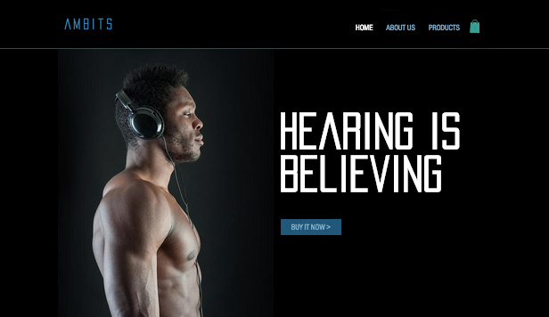 Electronics website templates – Headphones
