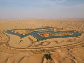 10 Reasons to visit Al Qudra Lakes