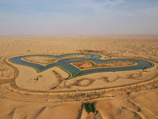 10 Reasons to visit Al Qudra Lakes