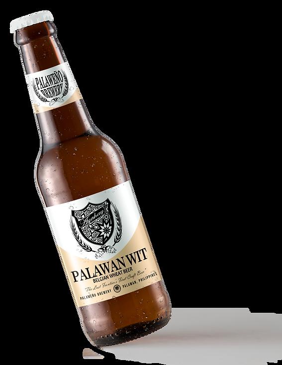 WIT Ayahay Beer Bottle Mock-up TILTED.png