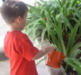 Asesorias Especialización Guía Montessori Montessori Canela | Madrid –