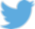 Twitter_logo_blue_twrqms.png