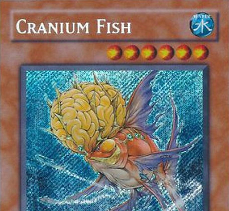 Bling Fish Deck - Out of Date, not Out of Style