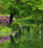 151-1510146_summer-nature-background-wal