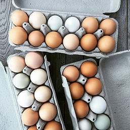Barn2Door Eggs in Cartons.jpg