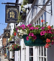 The Eel Pie