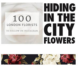 Hiding in the City Flowers