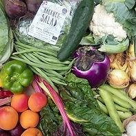 Growing Communities Organic Veg