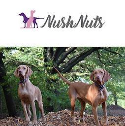 Nushnuts