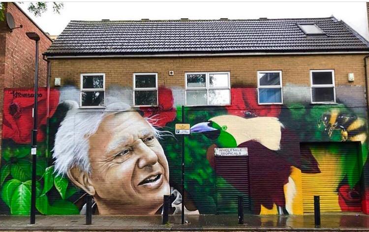 David Attenborough mural