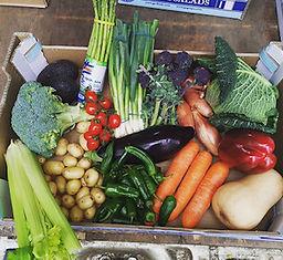 Crystal Palace Fruit & Veg Box