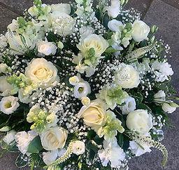 Lillies of Wanstead