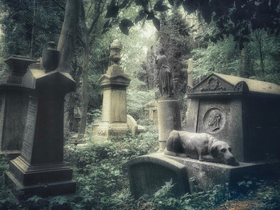 London's Magnificent Seven Cemeteries: the life inside