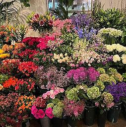Brian Kirkby Flowers