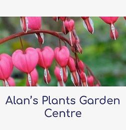 Alan's plants Garden Centre