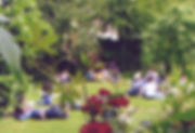 culpeper 3.jpg