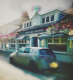 The Fox & Grapes
