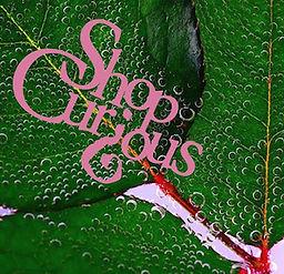 ShopCurious