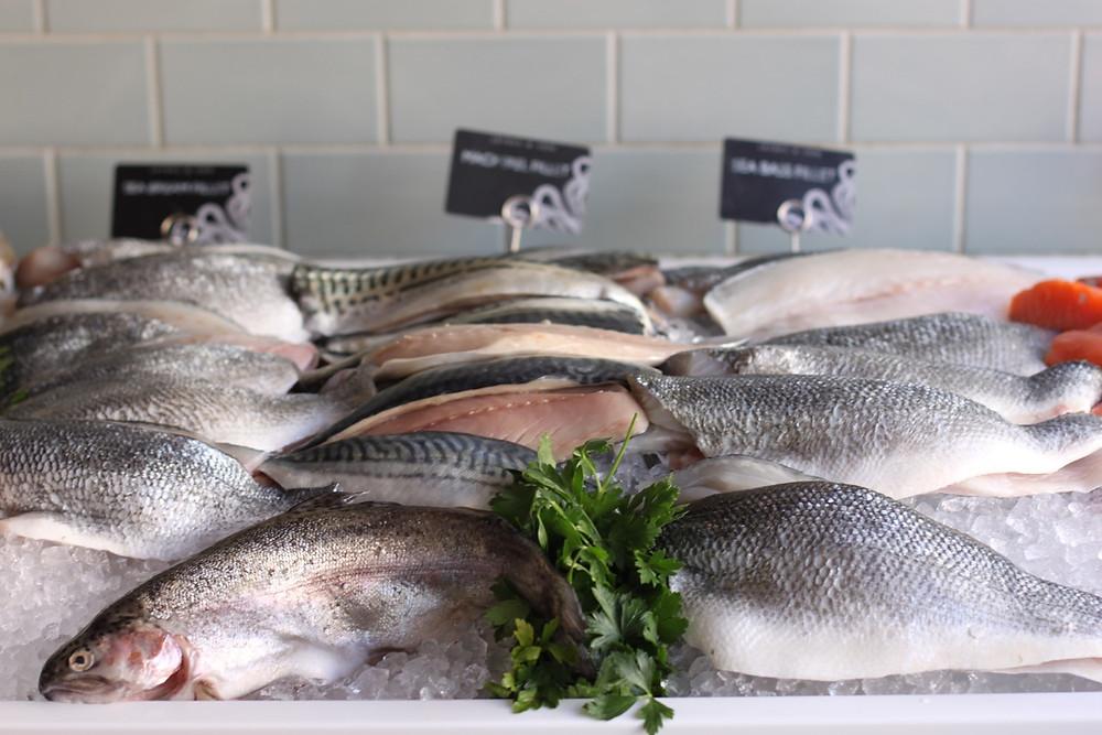 Jaines & son fishmonger