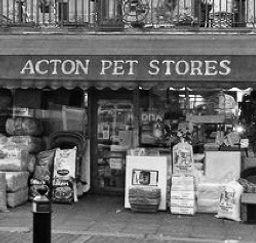 Acton Pets