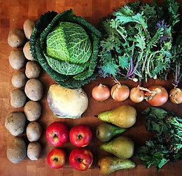Kentish Town Vegbox