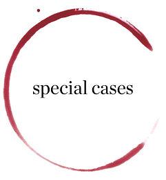 Special Cases Ltd
