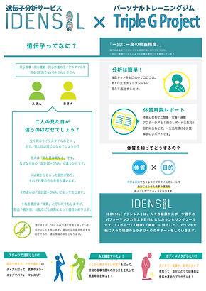 チラシ_idensil03.jpg