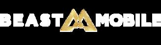 Asset 2BMobile logo white.png