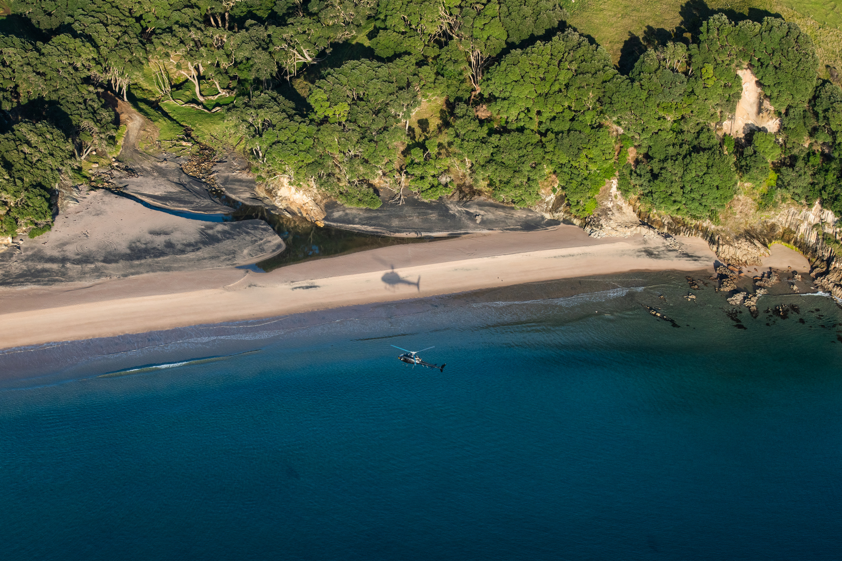 Helicopter landing on a Coromandel beach