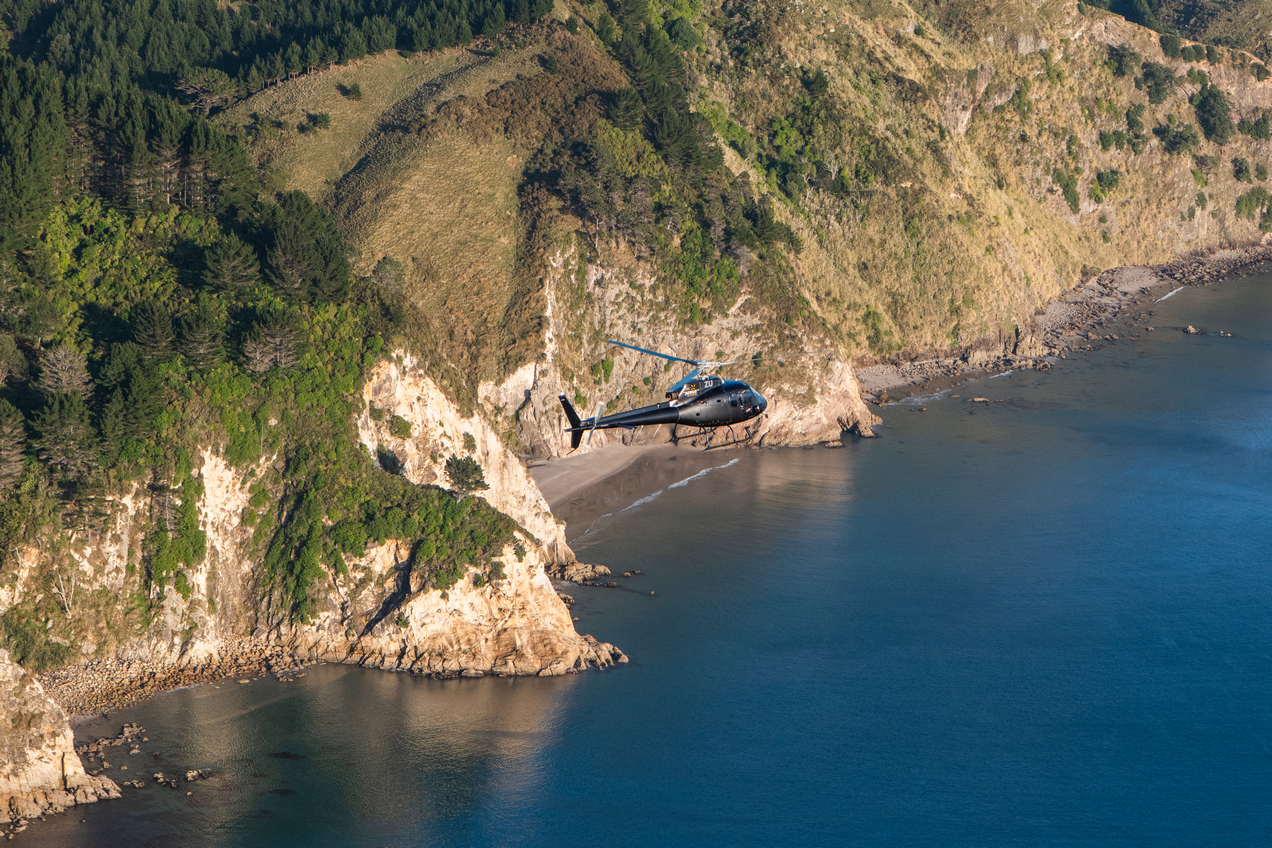 Helicopter flying past the towering Coromandel cliffs