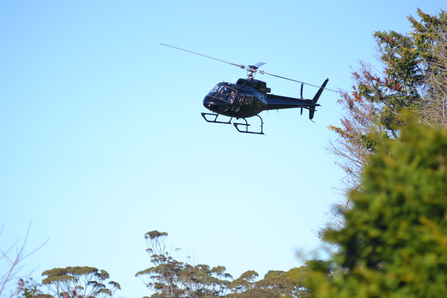 Helicopter arriving with guests for a wine tasting and picnic