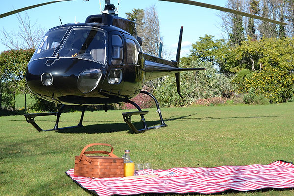 Private picnic on a helicopter trip in Tauranga