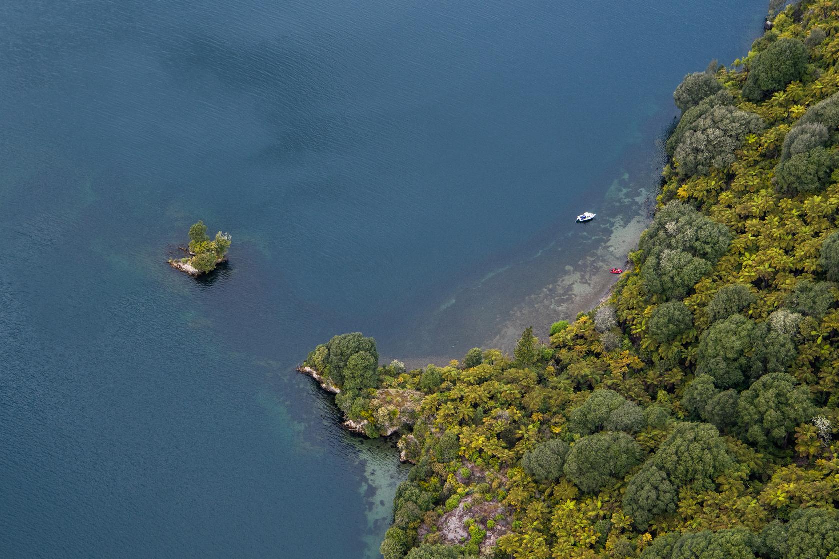 Small Island in a Rotorua Lake